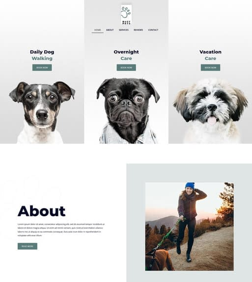 Dog Walking Website Design